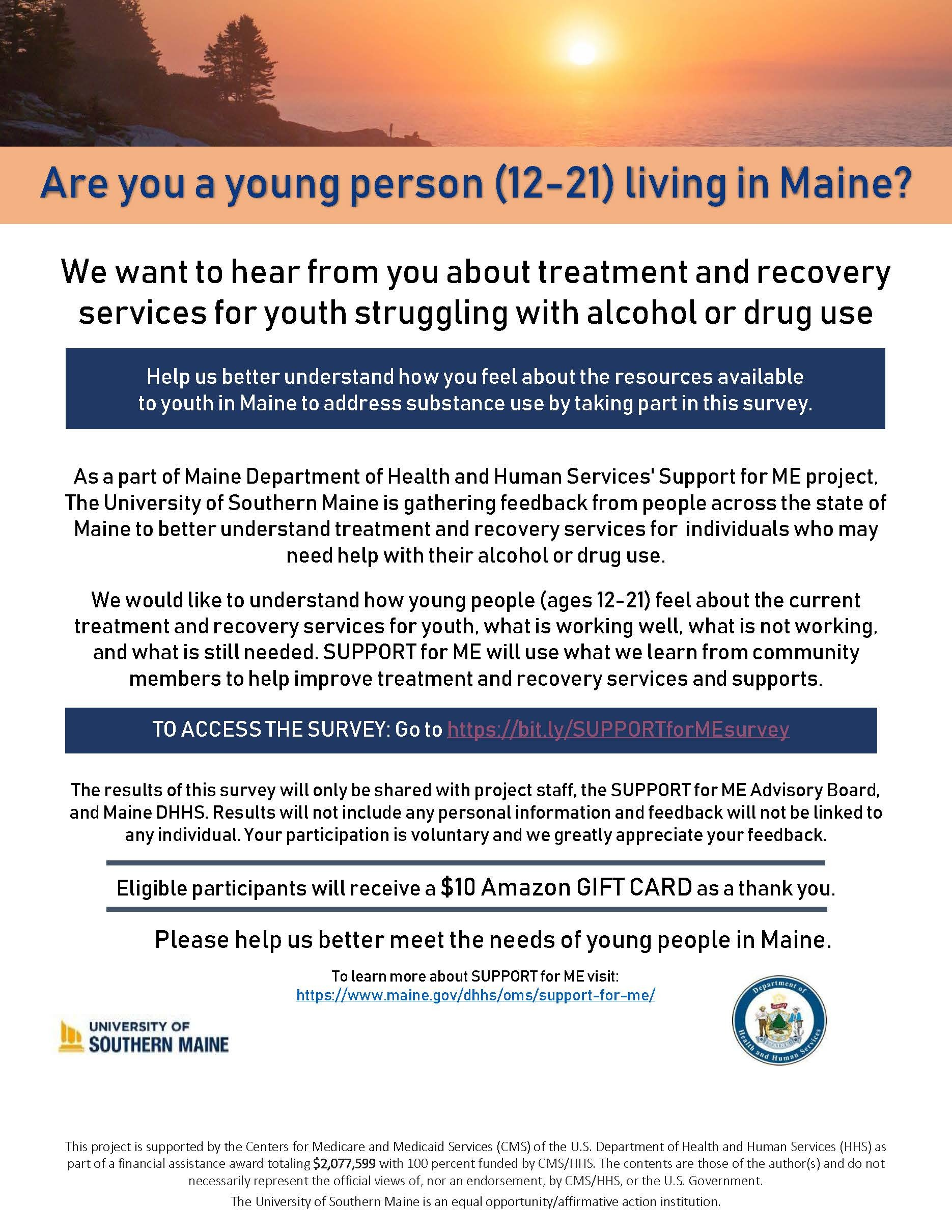 Youth Support Survey